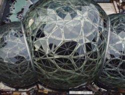 La biosphère géante d'Amazon